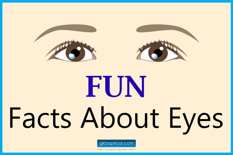 9a149374694 Fun facts about human eye